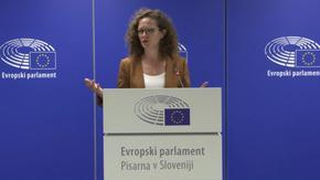 Европарламентът от Словения: Институциите работят, но обществото е разделено