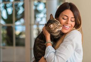 Учени доказаха: Котките са станали по-любвеобилни през пандемията