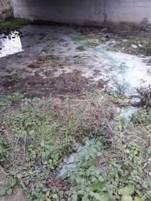 """РИОСВ провери """"Рока"""" за изпусната зелена вода, оказа се безвредна боя"""