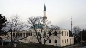 Австрия закрива джамии и ислямски организации след атентата във Виена