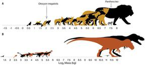 Учени разкриха защо няма средно големи динозаври