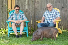Американци отглеждат най-старото прасе в света