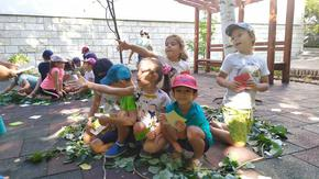 Подновиха заниманията по Горска педагогика