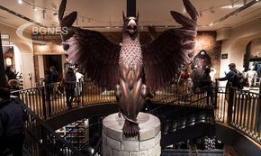 В Ню Йорк отвори най-големият магазин, посветен на Хари Потър