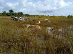 Загиналите българи в Кот Д'Ивоар са бивши военни от армията ни