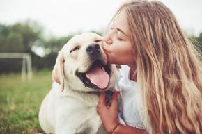 Кучетата станали приятели на човека, благодарение на жените