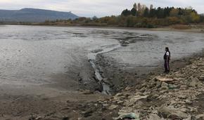Източиха Дибичкия язовир за ремонт, тонове риба умря