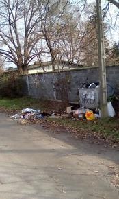 """Чистотата в село след """"подобряването"""" на качеството на услугата с новите контейнери"""