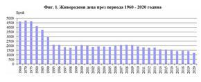 Повече от половината новородени в Шуменско са извънбрачни