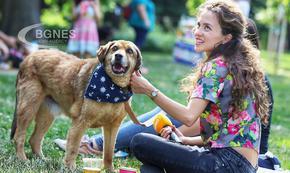 Способността на някои кучета да разбират човек е заложена в гените им