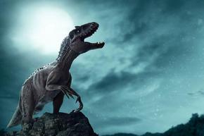 Динозаврите са живели целогодишно в Аляска и вероятно са били топлокръвни