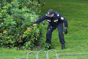 Полицаи претърсиха храсти и тревички преди протеста