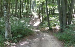 """Парк """"Шуменско плато"""" търси желаещи да поддържат туристическите маршрути"""