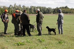 Пускат в природата 800 яребици за старта на ловния сезон за пернат дивеч