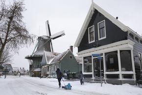 Жители на Амстердам покараха ски и се впуснаха в битки със снежни топки по улиците на града