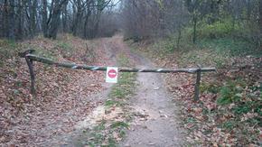 Забраняват моторите и колите по горските пътища на Шуменското плато