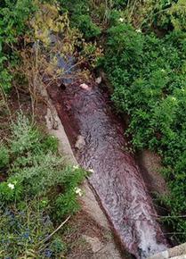 Екоинспекцията и Басейнова дирекция провериха сигнал за оцветяване на река Провадийска