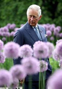 Принц Чарлз разкри, че е почитател на Даяна Рос, Едит Пиаф и Барбра Стрейзанд
