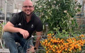 Британец набра 839 чери доматчета от един корен