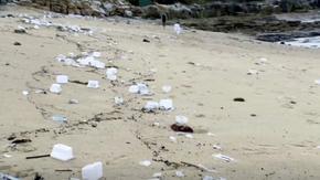 Германия забрани пластмасата за еднократна употреба
