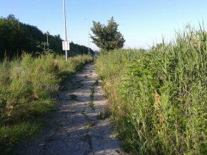 Пътя Шумен-Дивдядово