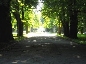 Градска градина Шумен