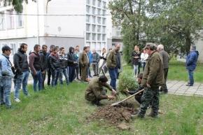 Лесовъди подариха ела на гимназията по селско стопанство във Велики Преслав
