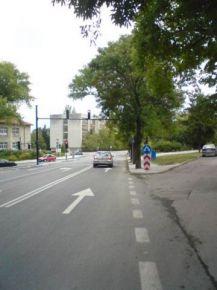 Историята на един светофар, пътен знак и едно дърво