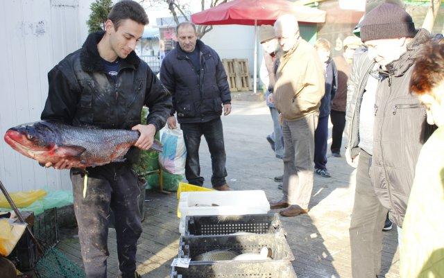 По традиция на Никулден на празничната трапеза се слага шаран. На шуменския пазара той върви по 6 лева за килограм.